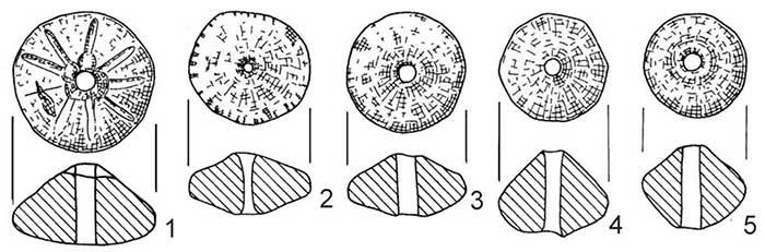 spindle-whorls-funnel-beaker-poland