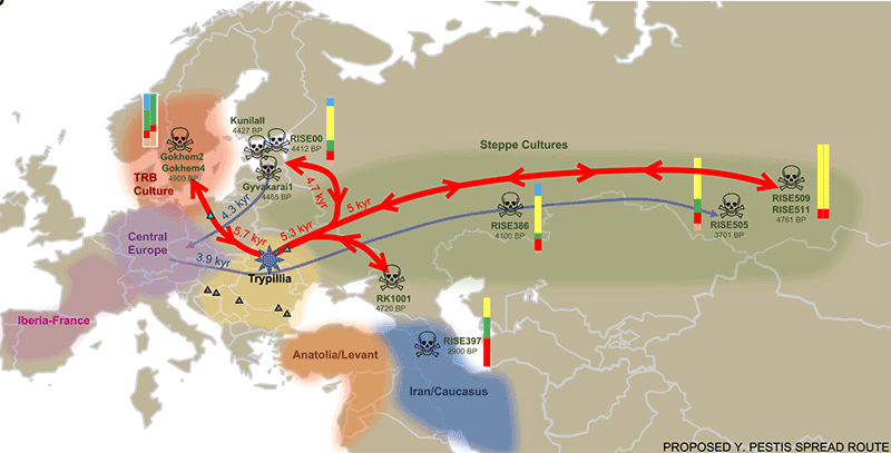 yersinia-pestis-spread-route