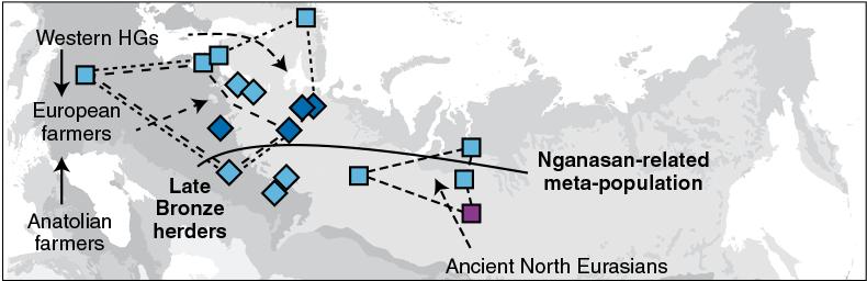 uralic-clines-steppe-whg-ane-nganasan