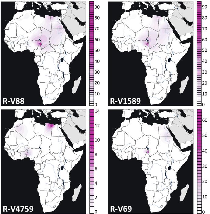 r1b-v88-v2219-africa