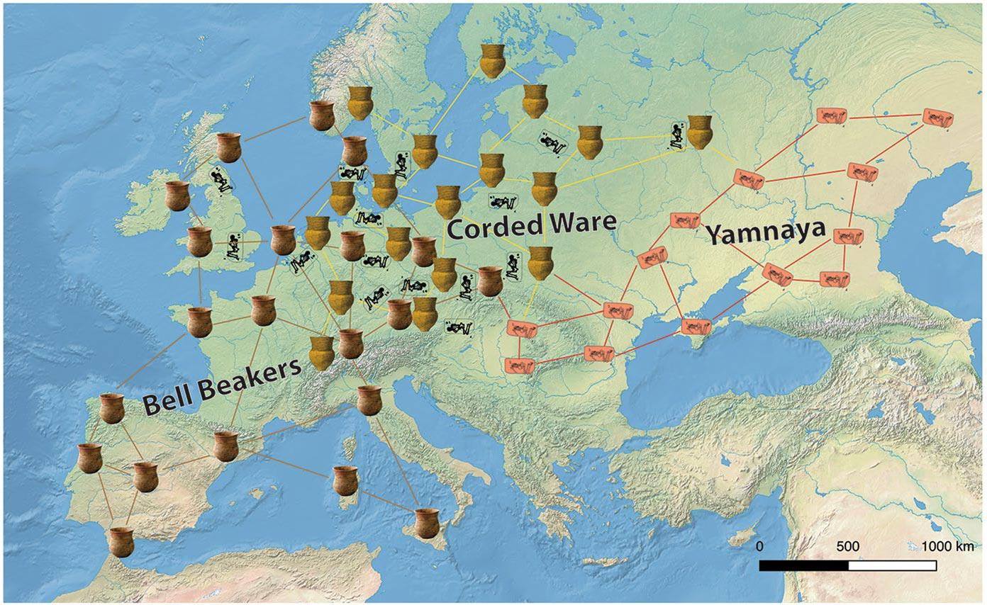 yamnaya-corded-ware-bell-beakers