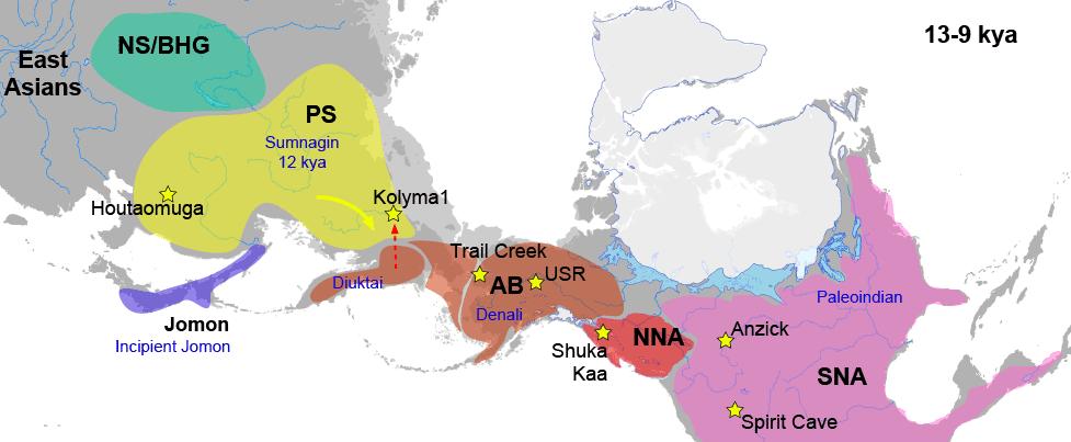 sunnagin-ancient-beringian-north-american