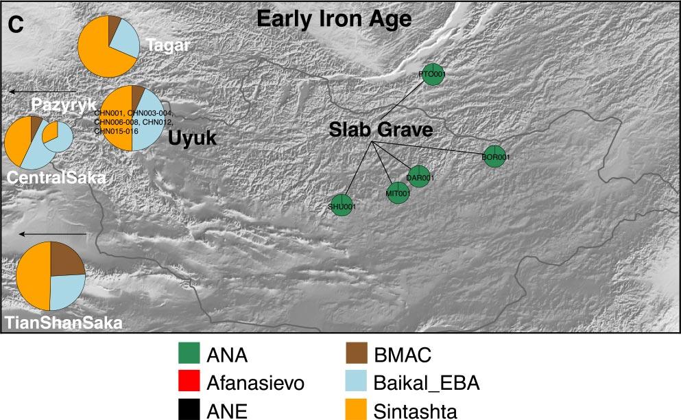 slab-grave-pazyryk-sagly-uyuk-ancestry